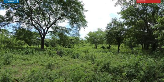 Se vende lote de terreno ubicado en km 9 Carretera Vieja a León